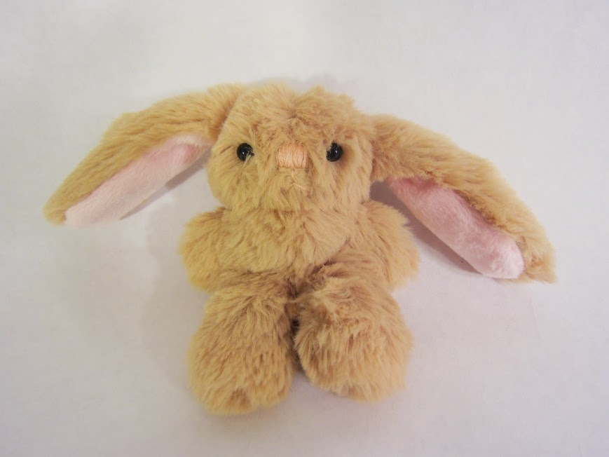 his bunny buddy